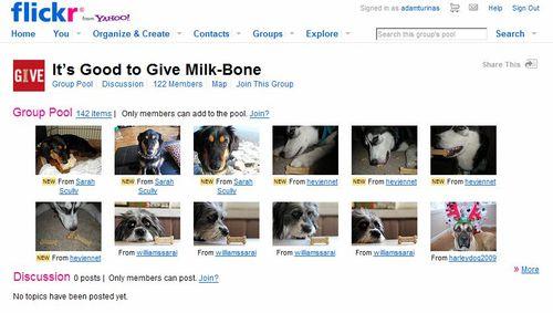 Milkboneflickr